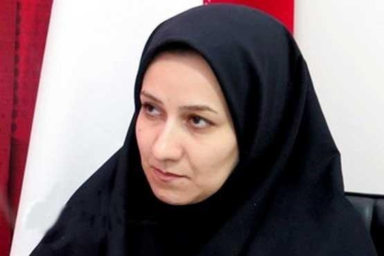 طرح سادهسازی مراحل شروع کسبوکار در استان زنجان اجرا میشود