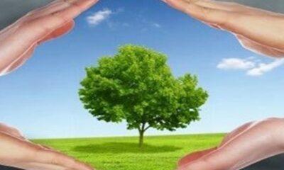 برگزاری کارگاه آموزشی همیاران طبیعت در بستر مجازی
