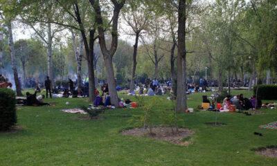 درب همه پارکهای جنگلی زنجان در روز طبیعت بسته است