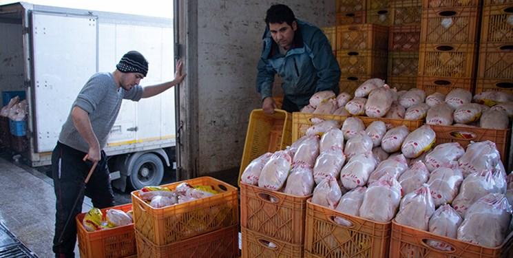 ۱۷۰ تن مرغ در زنجان ذخیره سازی می شود