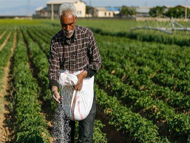 افزایش 20 درصدی کود کشاورزی در استان زنجان