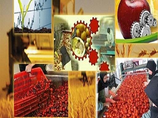 با توسعه و ایجاد واحدهای فرآوری در زنجان ۲ هزار و ۵۱۰ شغل ایجاد شد
