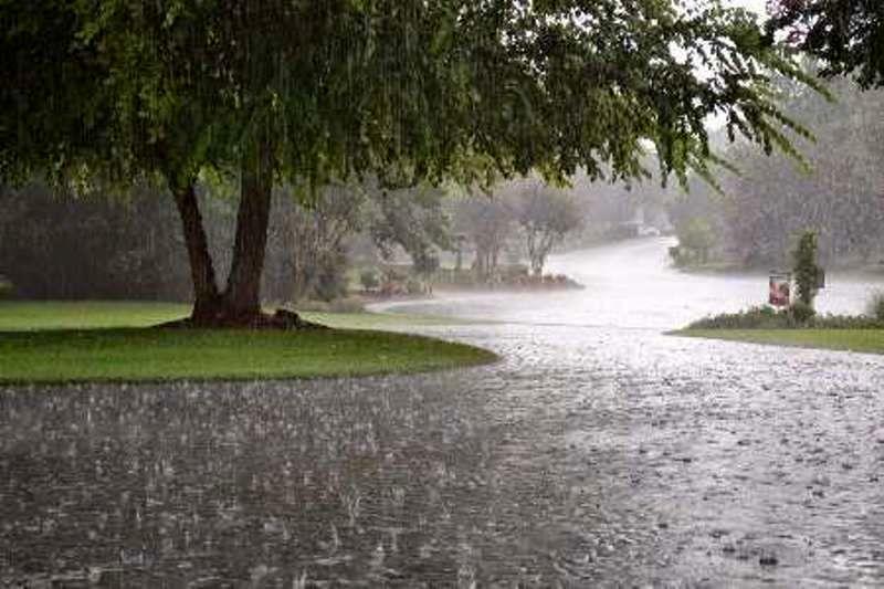 بارندگی ها در استان نسبت به سال قبل حدود 47 درصد منفی است
