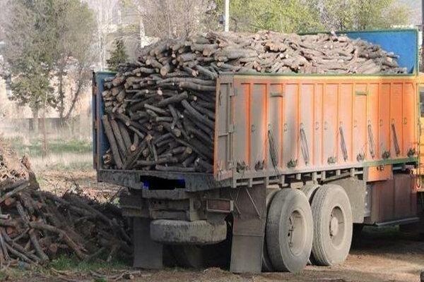 کشف بیش از18 تن چوب قاچاق در سلطانیه