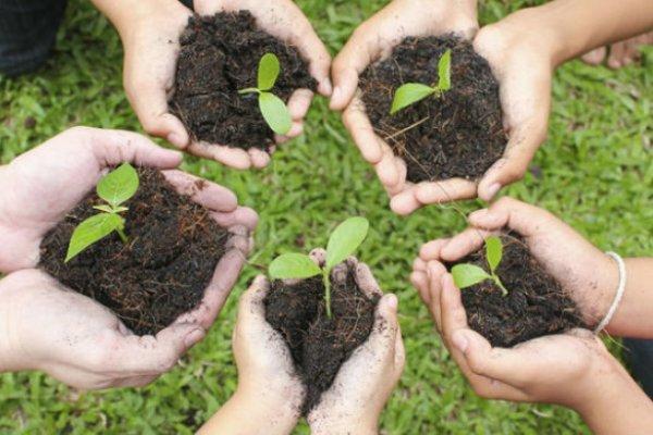 عضویت یک هزار و 130 نفر در سامانه همیار طبیعت