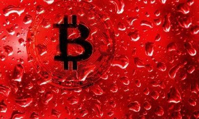 چراغ قرمز در بازار رمزارزها: قیمت بیت کوین به کمتر از ۳۰ هزار دلار رسید