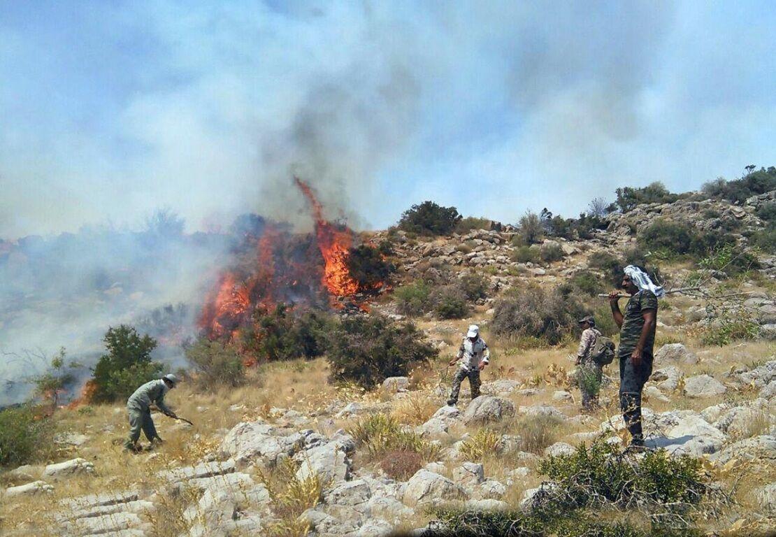 همکاری جوامع محلی با نیروهای اطفاء حریق منابع طبیعی در هنگام آتش سوزی