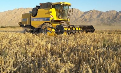 افزایش تولید در دیمزارها با استفاده از ادوات و روش های نوین کشاورزی